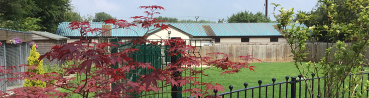 Kennel exterior with trees